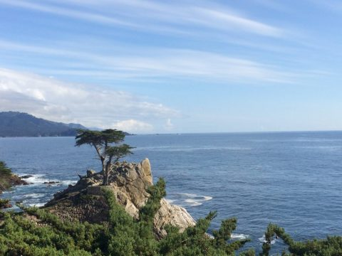 Monterey, 17-Mile Drive, Pacific Coast Hwy