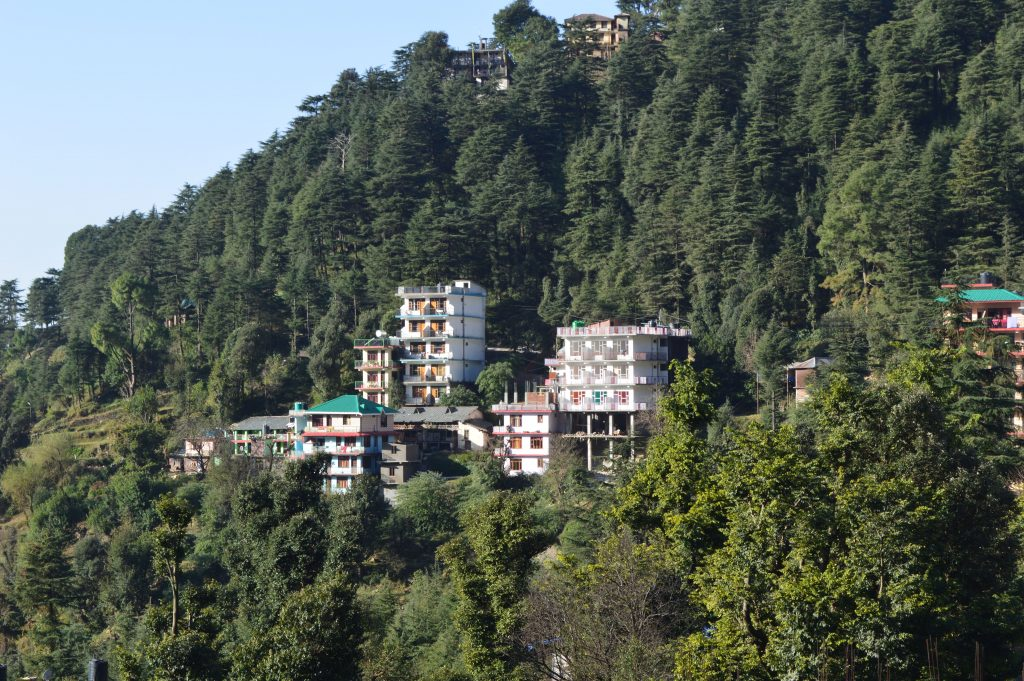 Good morning McLeod Ganj